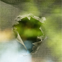 Wicox Brothers_mosquito-screen-hole_Pic 2021.png